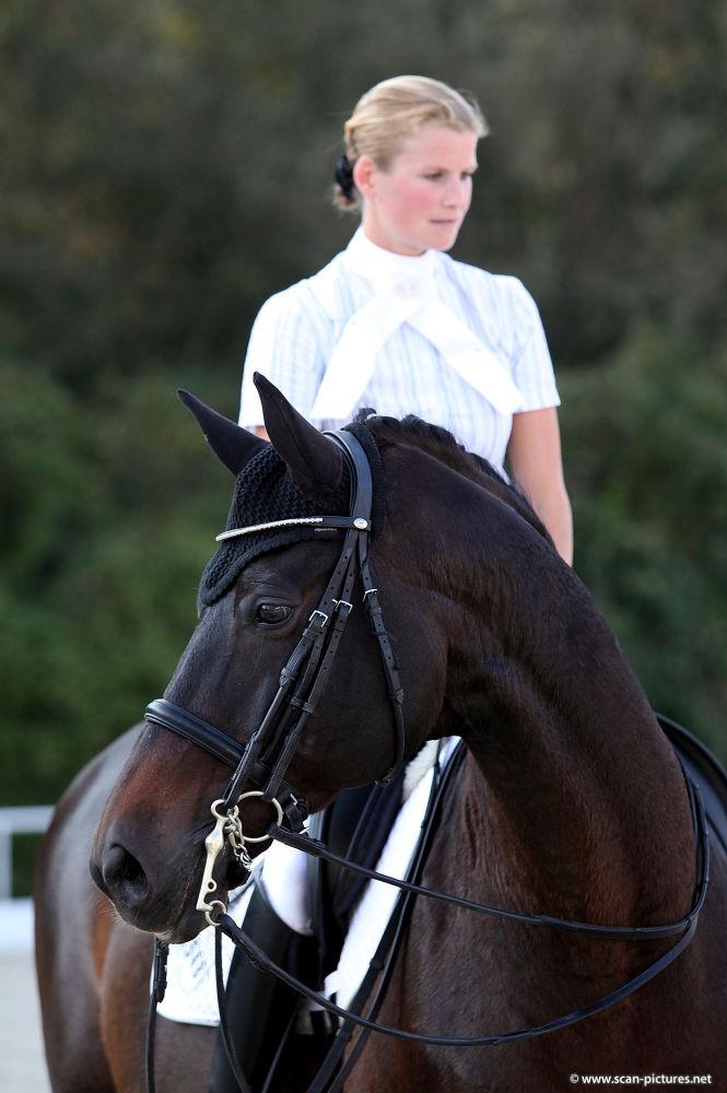 Niemals Luises BlogUnterschätze PferdPropferd at Ein Nn0P8XZkwO